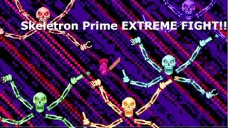 [Skeletron] Extreme Fight! Terraria