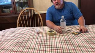 How to make a homemade fly trap that works