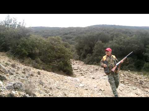 Wild Boar Hunting - video chasse au sanglier