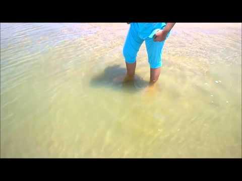 Dekhecho Ki Take Oi Neel Nodir Dhare video