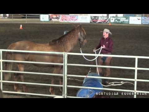 Parelli Trailer Loading Clinic (Full Video)