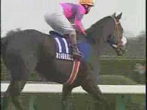 ナリタブライアン~シャドーロールの3冠馬②~