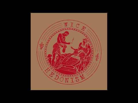 Wice - Just Kiddin [STEIN001]
