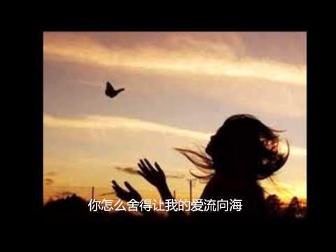 许茹芸—泪海