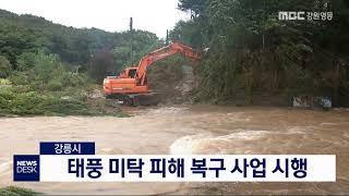 투/강릉시, 태풍 미탁 피해 복구 사업 시행