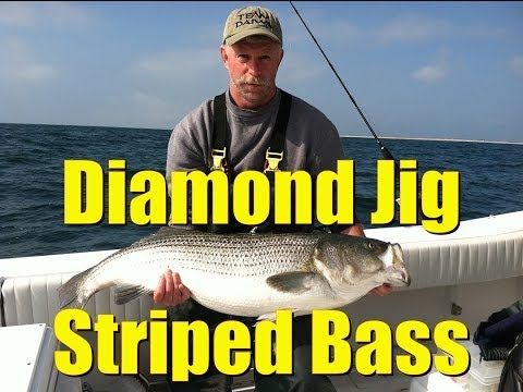 Diamond Jigging BIG STRIPED BASS Saltwater Fishing HOW TO Video