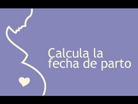 Calculadora De Embarazo, Semanas De Gestacion Con Calculadora De Embarazo