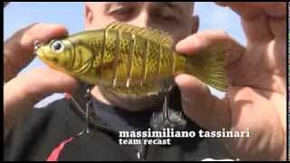 biwaa hard swimbaits seven - live action 2