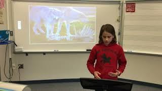 Why we should not kill wild animals | Jillian Reck | Arlington Traditional School
