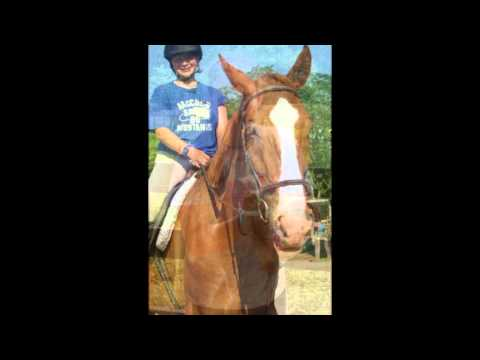 marmon valley farm is a riding farm and this is me at camp. The Chestnuts Name Is Watson. and the Darkish Bay (brown) is Joey. And The White/Dappled Grey is Whistler. sorry for bad music!...