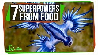 7 Species That Really Are What They Eat