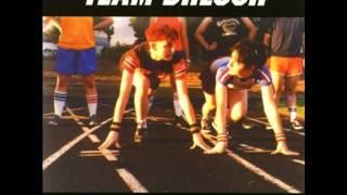 Watch Team Dresch Fake Fight video