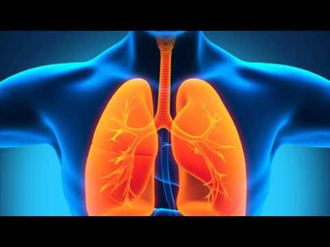 0 - Пневмонія без температури симптоми у дорослих
