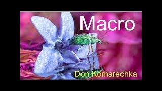 MACRO Photography Tips w/ Don Komarechka (Tony & Chelsea Live)