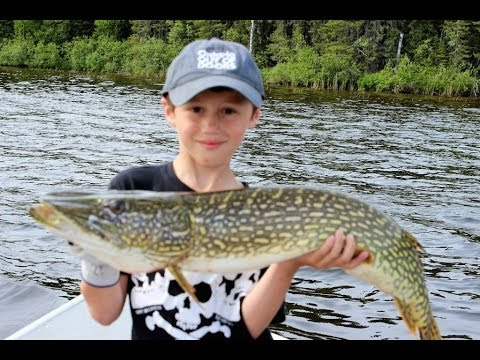 Trophy Pike Fishing With The Whole Family At North Caribou Lake