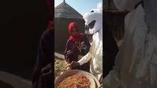 La culture Toubou