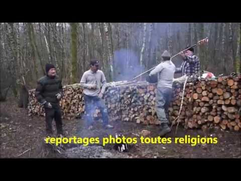 4 bigas s'en vont aux bois n°1  http://photographe-pascal-point.e-monsite.com/ thumbnail