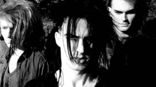 Watch Skinny Puppy Assimilate video