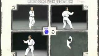 Các kỹ thuật căn bản trong Taekwondo