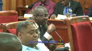 VIDEO: Haiti - Intervention du Senateur Rony Celestin