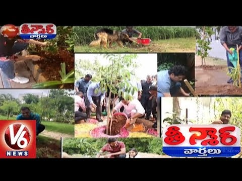Celebrities Green Challenge Goes Viral | Haritha Haram | Teenmaar News