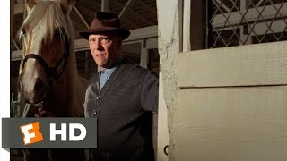 Seabiscuit (4/10) Movie CLIP - Soothing Seabiscuit (2003) HD