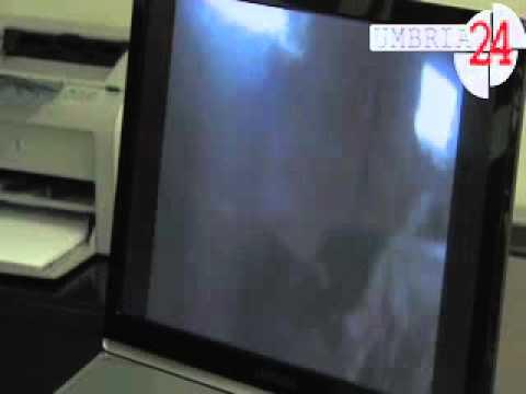 Animali maltrattati in allevamento lager a Città di Castello. Servizio Maurizio Troccoli