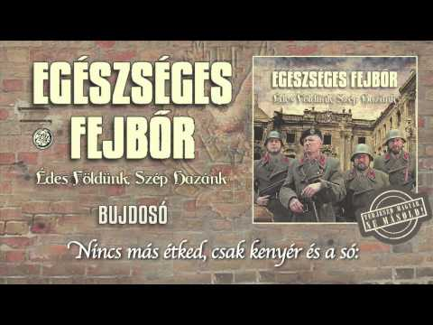 Egészséges Fejbőr - Bujdosó (hivatalos Szöveges Video / Official Lyrics Video)