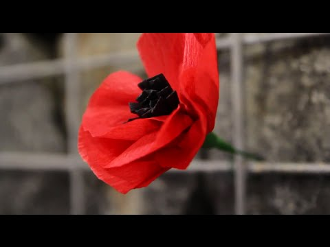 In memory of those who have gone before us - the troopers of the Lancers, the 1st Armoured Regiment (AIF), and 1st Light Horse Regiment - and all Australian soldiers and service personnel -...