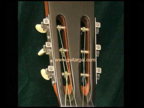 ARK New Era Maurer Parlor Guitar