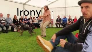 Training   Irony of different tools   RV Dog Trainer