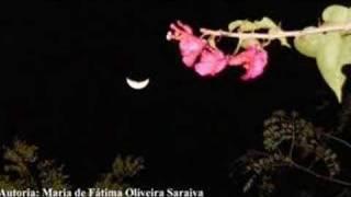 Vídeo 431 de Caetano Veloso