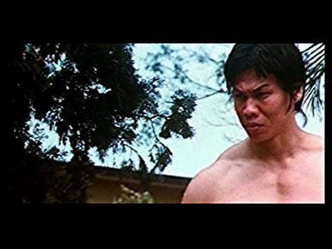 La Gran Revancha De Bruce Lee video
