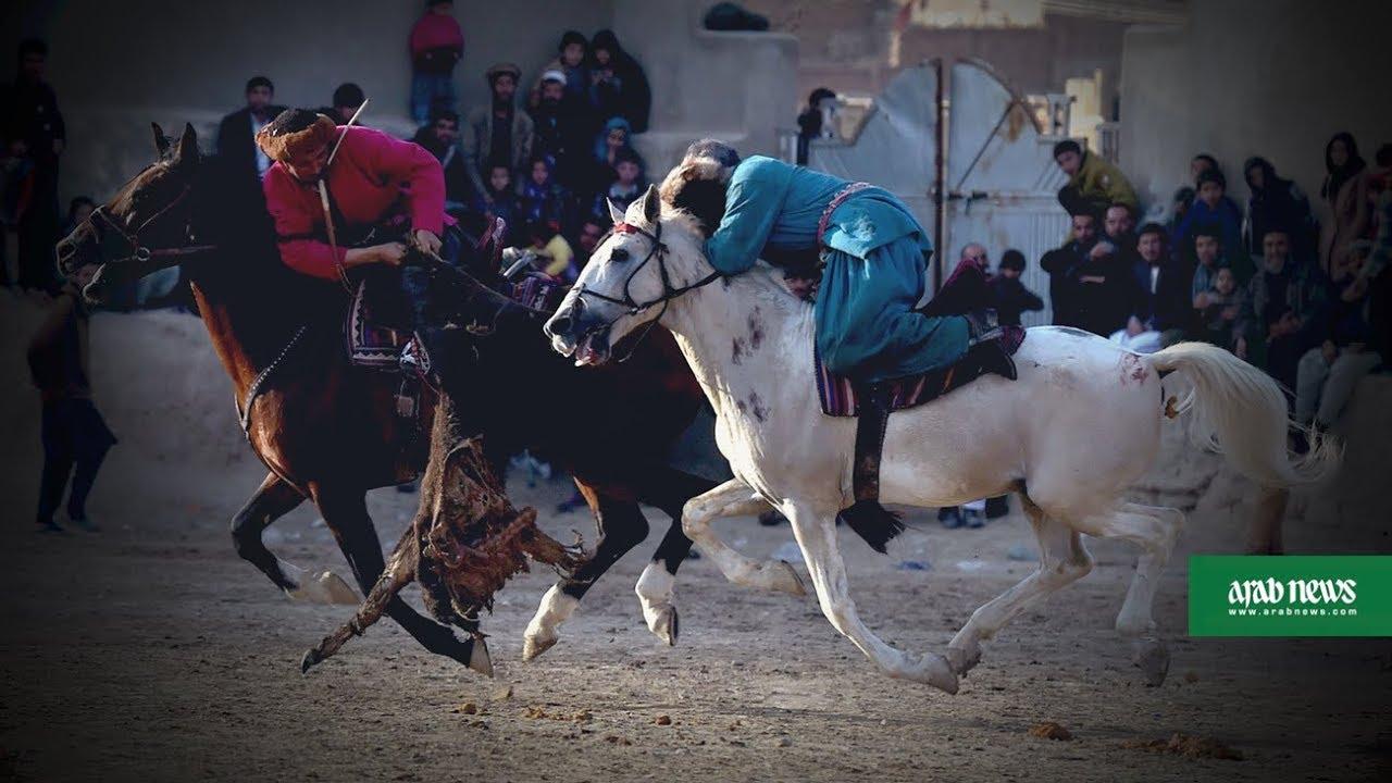 Afghanistan's buzkashi horses prepare for battle