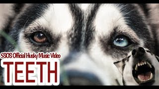 "5SOS 'Teeth"" Husky Cover Music Video"