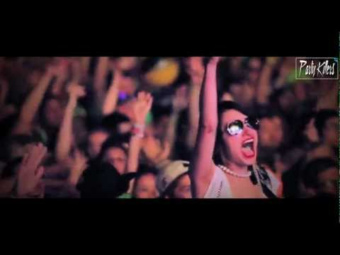 Afrojack & Steve Aoki Feat Miss Palmer No Beef Party Killers Remix