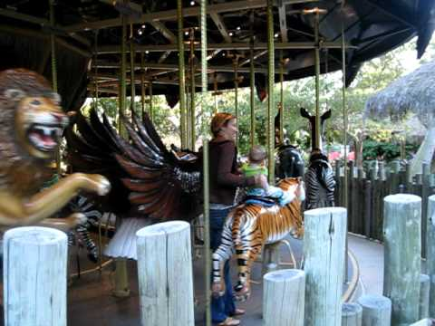 Wap Carousel video