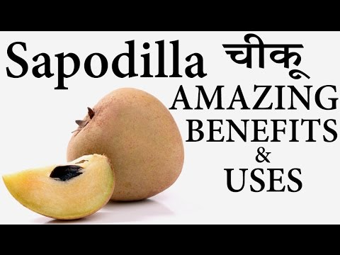 चीकू के स्वास्थ लाभ │ Health Benefits & Uses of Chikoo (Sapodilla) Fruit in Hindi │ Life Care