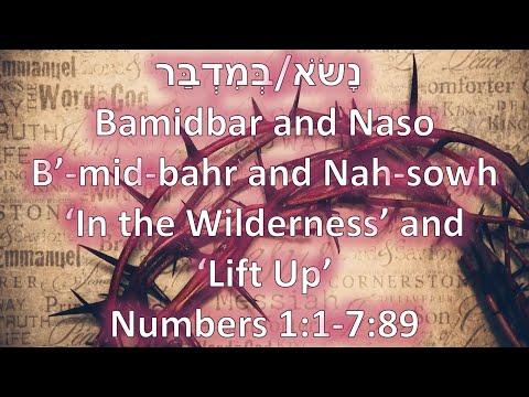 Torah Portions: Bamidbar and Naso