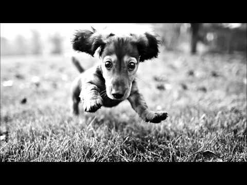 TRAP â–º Karol Tip - Drift (Eskei83 Remix)