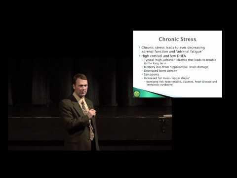 Adrenal Fatigue Part 06 - Chronic Stress
