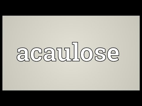 Header of Acaulose