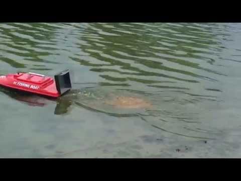 рыбалка обучение с нуля
