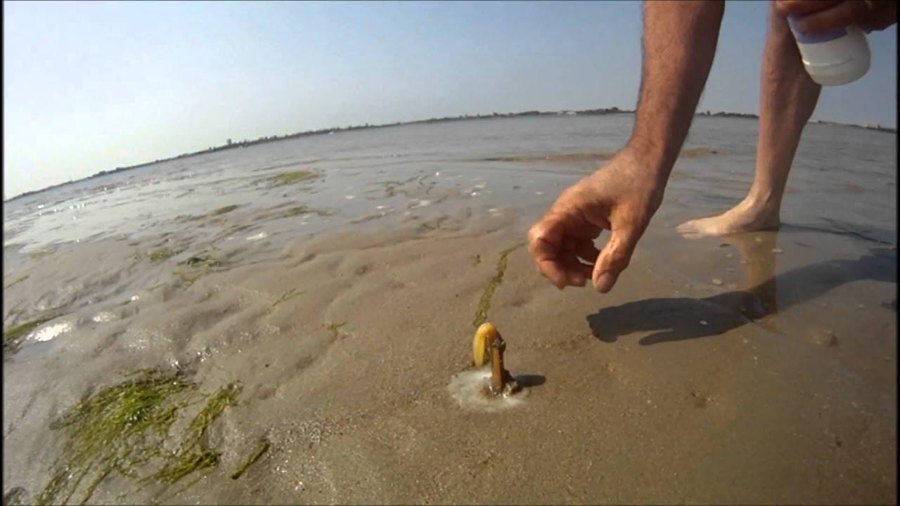 Comment capturer un couteau dans le sable avec du sel youtube - Comment compacter du sable ...