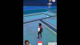Valor gyms as far as you can see. #Teamvalor