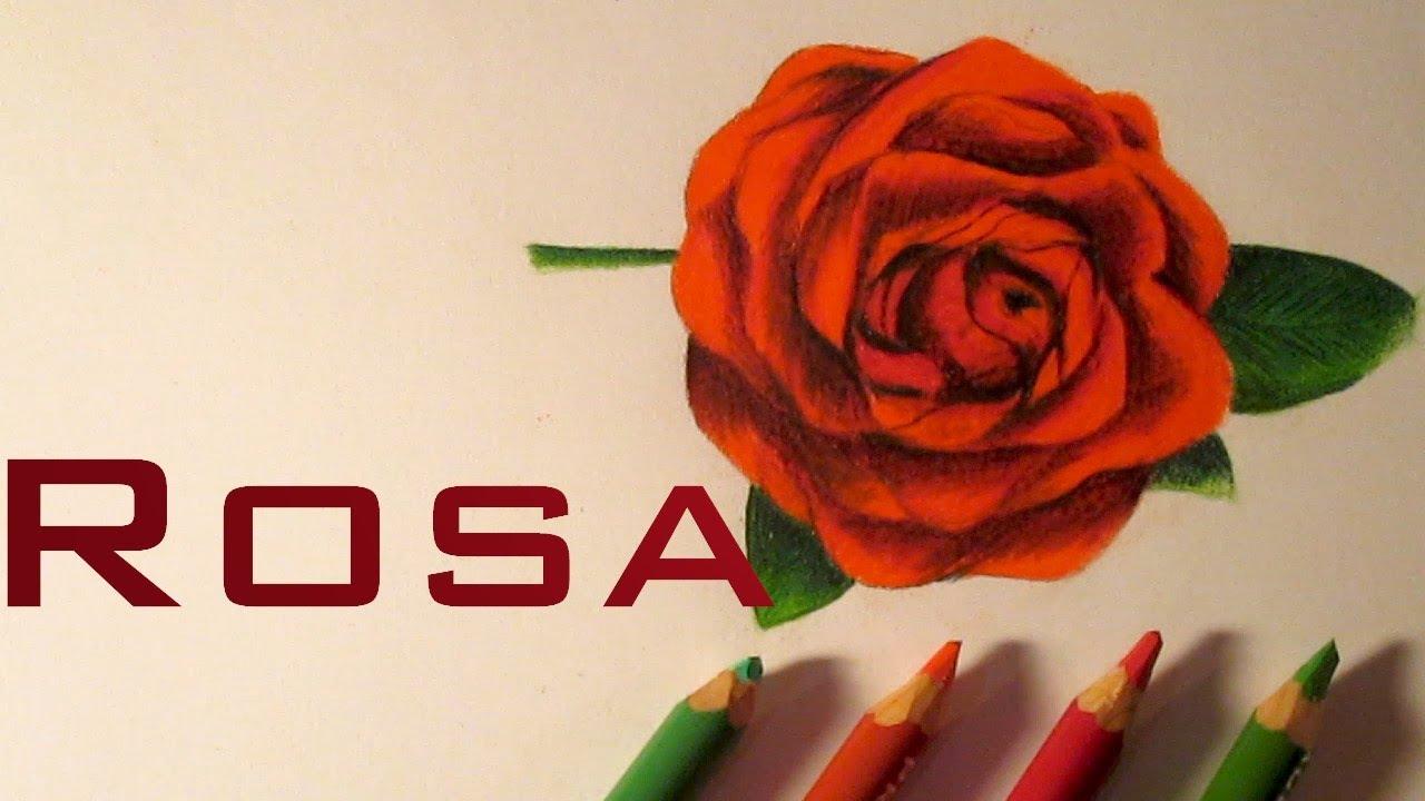 Dibujo de una hermosa rosa c mo dibujar rosas hd youtube - Como secar una rosa ...