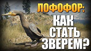 GTA 5 - Как Играть за Животных? (Лофофоры) #8