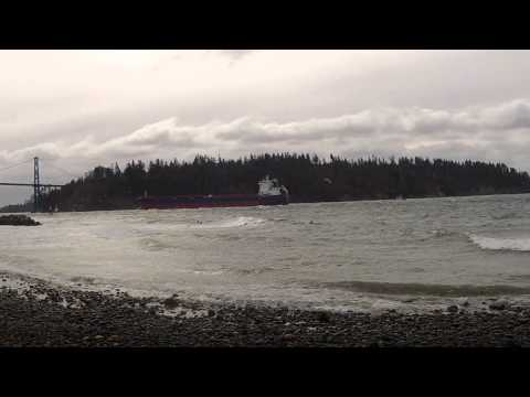 surfing, vancouver, ambleside, park, beach, west, feb, 25th, 2012, Waves, Ocean, Canada, Surf