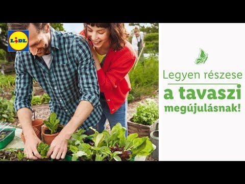Tavaszi kertápoláshoz ajánljuk 02.06-tól | Lidl