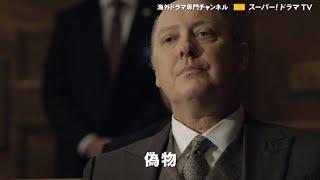 ブラックリスト シーズン5 第22話